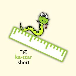 2a-short - Copy